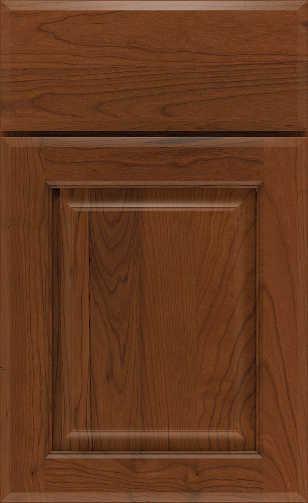 birkdale_cherry_raised_panel_cabinet_door_havana